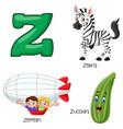 z alphabet vector image vector image