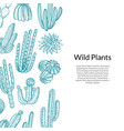 cactus pattern hand drawn wild cacti vector image vector image