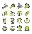 celery icon set vector image