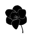 cute silhouette flower vector image