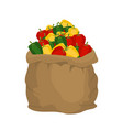 pepper burlap bag sack of vegetables big crop on vector image vector image