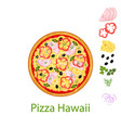 pizza hawaii vector image vector image
