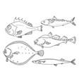 set fish line vector image vector image