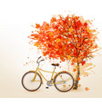 Autumn tree background with a yellow bicycle vector image vector image