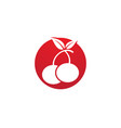 cherry logo template icon vector image