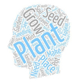 Easy To Grow Seeds And Plants Which Can Be Grown vector image vector image