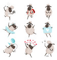 funny cartoon sheeps in various action poses vector image