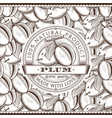 vintage plum label on seamless pattern vector image vector image