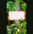 wooden board in forest vector image vector image