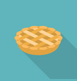 apple or pumpkin pie in flat design vector image vector image