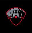 cane corso dog e sport logo icon vector image vector image