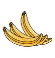 color crayon stripe set bananas fruit vector image vector image