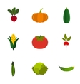 Farm vegetables icons set flat style vector image vector image