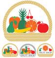 Fruit vector image vector image