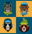 hipster wild animals cartoon vector image vector image