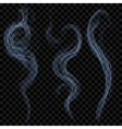 Light blue smoke vector image vector image
