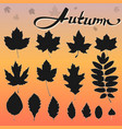 set of 15 black leaves vector image