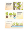set of horizontal web banners with plants growing vector image vector image