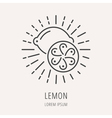 Simple Logo Template Lemon vector image