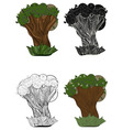 vector set of oak trees vector image vector image