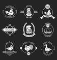 Set of poultry farm logo emblem Chicken turkey vector image