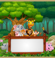 animals with blank sign in forest vector image vector image