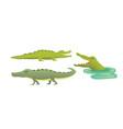 cute crocodile set aligator cartoon vector image vector image