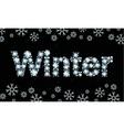 Diamond word winter vector image vector image