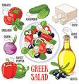 Greek salad vector image vector image