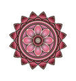mandala circular pattern with pink lotus vector image