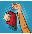 Sale bags packages in the hands of women vector image