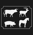 set of animals isolated on black background vector image
