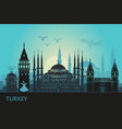 abstract landscape istanbul with main vector image vector image