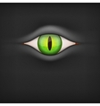 Dark Background with animal eye vector image
