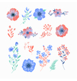 floral set beautiful flowers and leaves vector image
