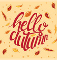 hello autumn custom typography vector image vector image