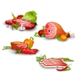 Meat With Vegetables Set vector image vector image