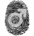 Thumb print with male gender symbol vector image vector image