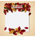 autumn background blank layout vector image vector image