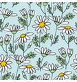 chamomile flower color seamless pattern vector image vector image
