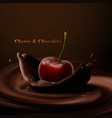 cherry falling in chocolate vector image