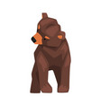 cute brown grizzly bear wild forest animal vector image