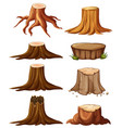 different types of stumps vector image vector image