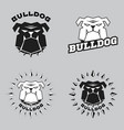 set logo bulldog head vector image vector image
