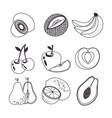 fresh organic fruit concept vector image