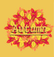 autumn leaves an inscription autumn vector image