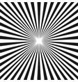 black white sunburst background stripe lines vector image