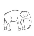 elephant isolated black icon vector image vector image