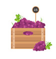 grape in wooden grate vector image vector image