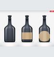 rum bottle set mockup vector image